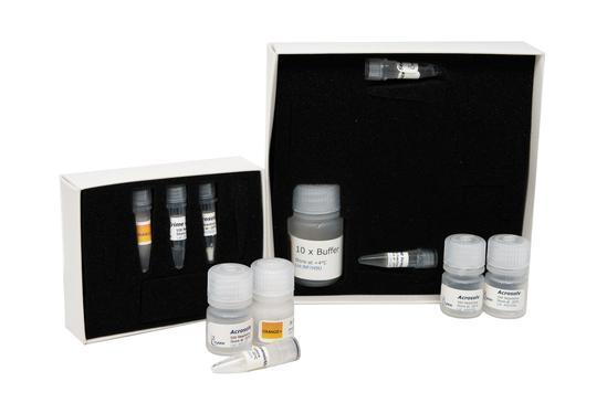 forensicGEM Sperm (50)
