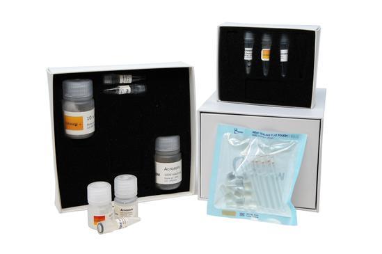 PDQeX forensicGEM Sperm (50)