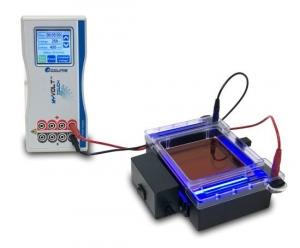 myGel InstaView Gel Tank with Blue LED Illuminator