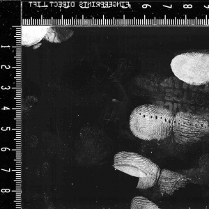 Gellifters Transparent 18 x 36cm