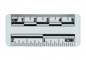 Ruler Transparent 5cm 10/Pack