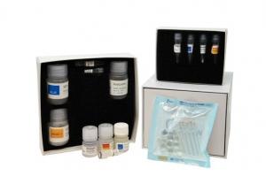 PDQeX forensicGEM Universal (50)