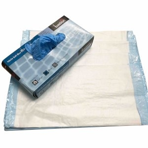 Workplace Testing Hygiene Pack (Large Gloves)